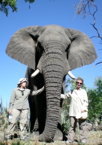 Elephant conservation program, Botswana